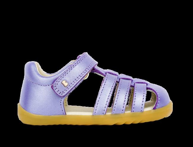 Classic Jump Grape Shimmer